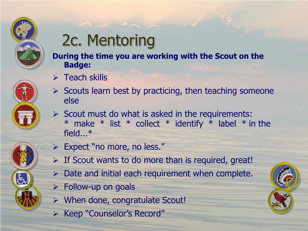 2c. Mentoring