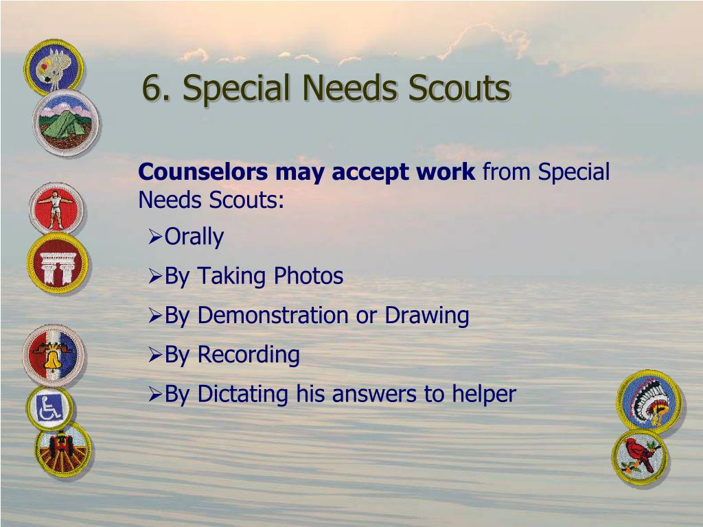 6. Special Needs Scouts