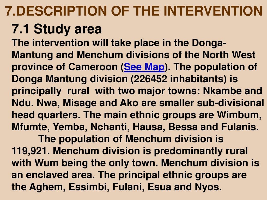 7.DESCRIPTION OF THE INTERVENTION