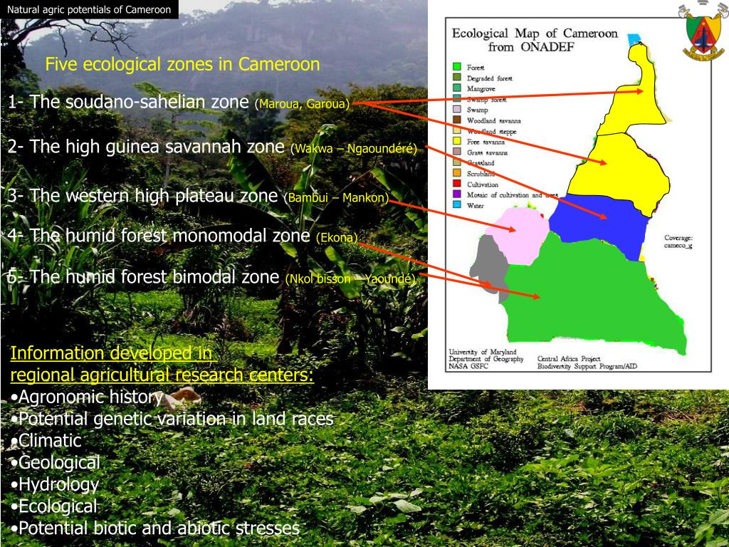 Natural agric potentials of Cameroon