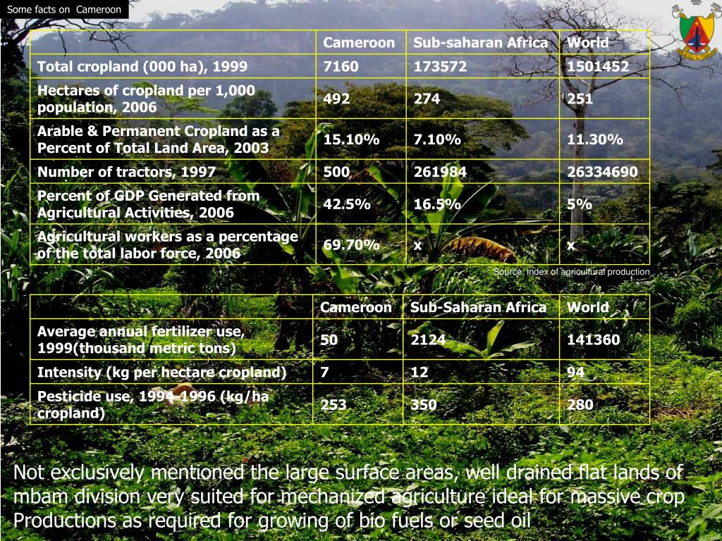 Some facts on  Cameroon