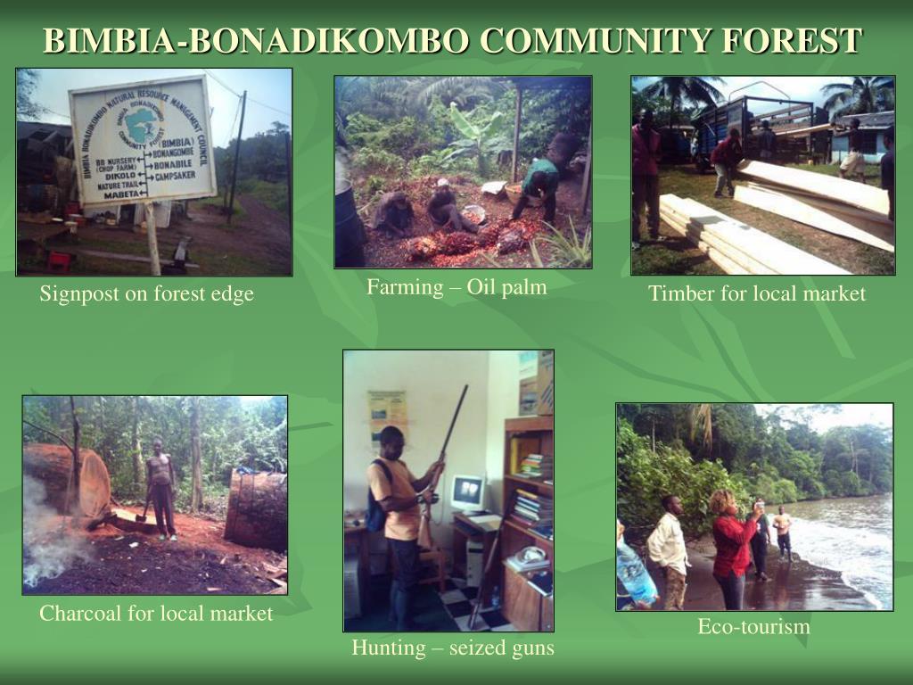 BIMBIA-BONADIKOMBO COMMUNITY FOREST