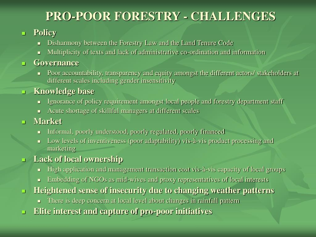 PRO-POOR FORESTRY - CHALLENGES