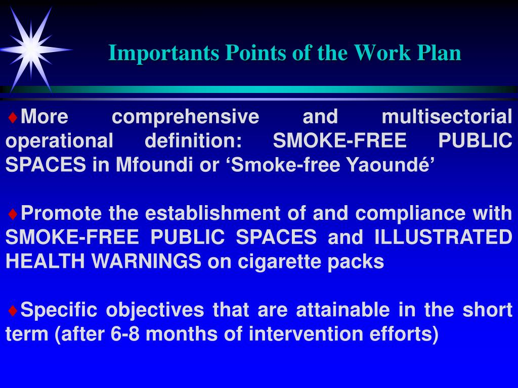 Importants Points of the Work Plan