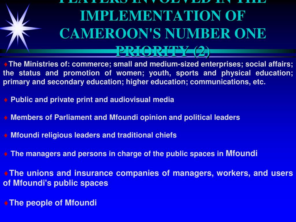 PLAYERS INVOLVED IN THE IMPLEMENTATION OF CAMEROON'S NUMBER ONE PRIORITY (2)