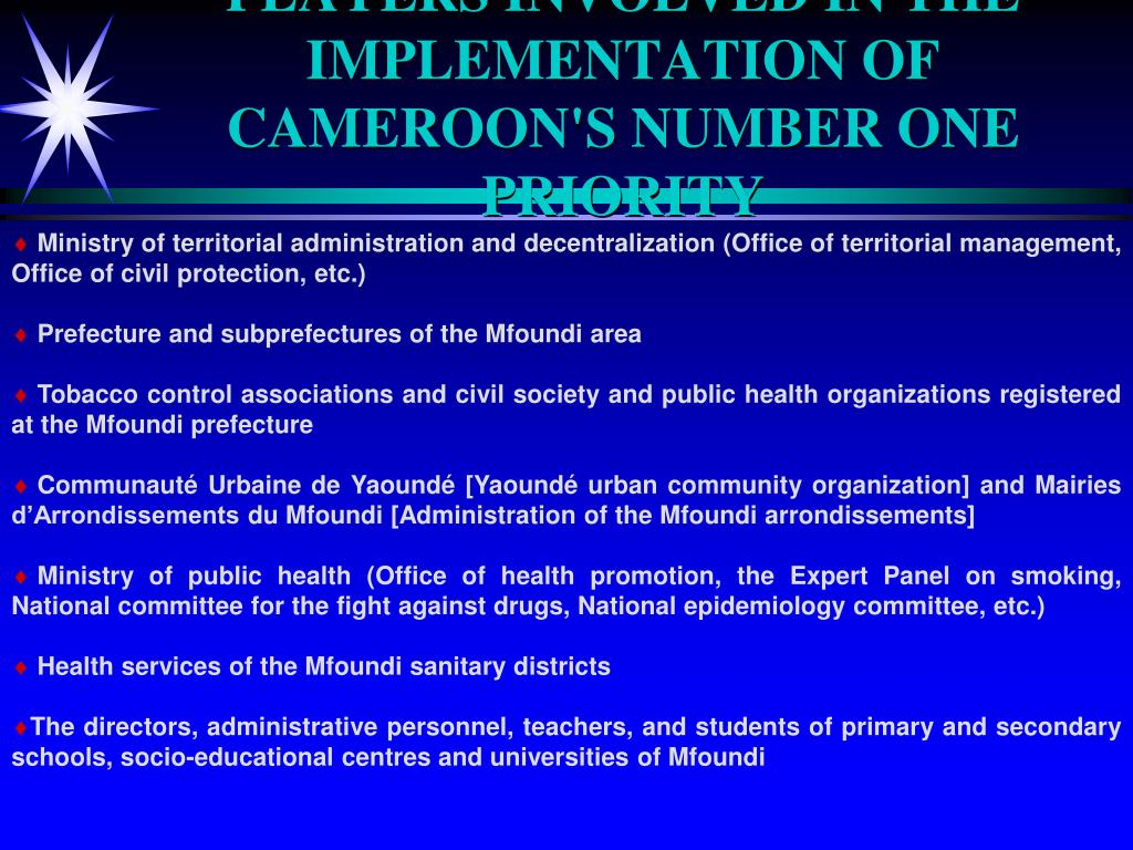 PLAYERS INVOLVED IN THE IMPLEMENTATION OF CAMEROON'S NUMBER ONE PRIORITY