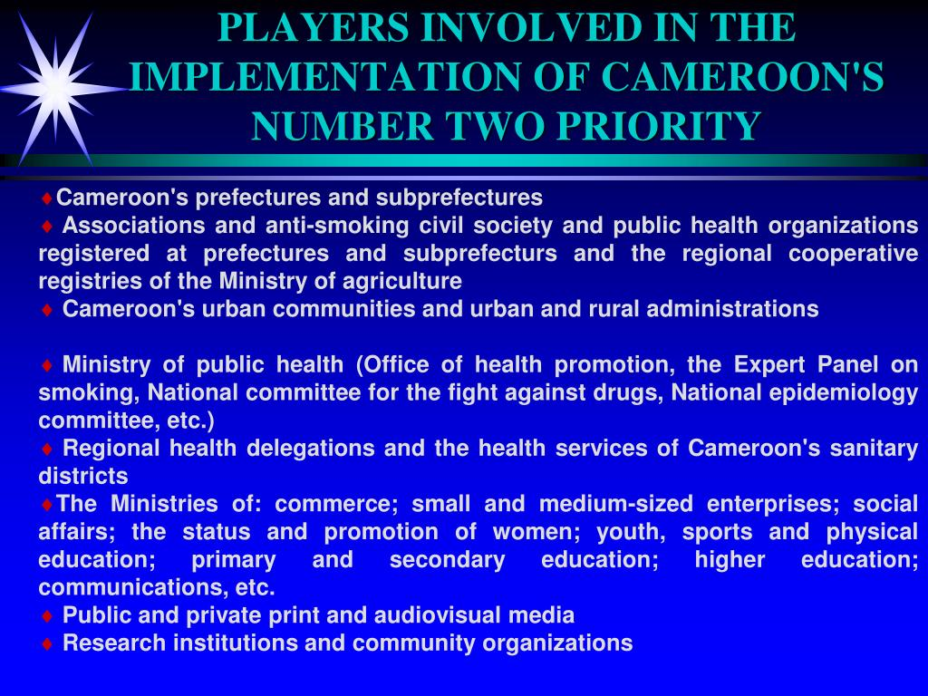 PLAYERS INVOLVED IN THE IMPLEMENTATION OF CAMEROON'S NUMBER TWO PRIORITY