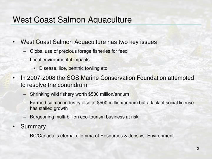 West coast salmon aquaculture