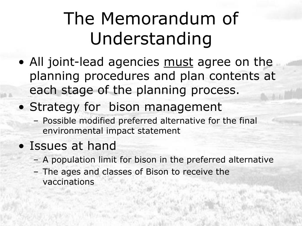The Memorandum of Understanding