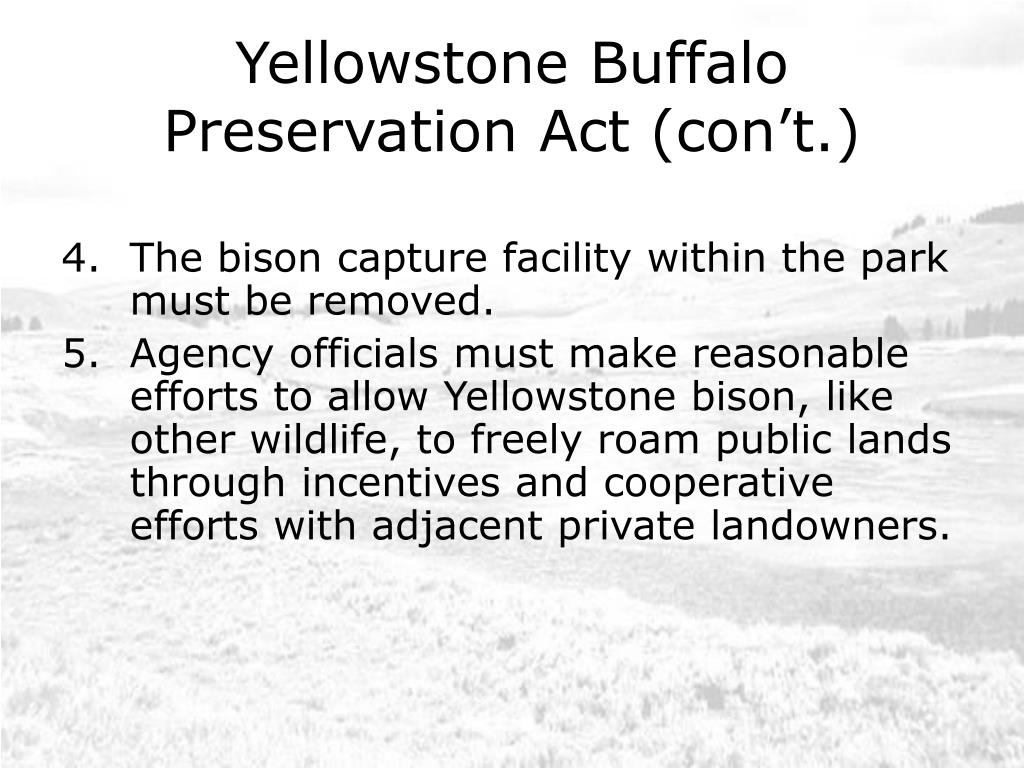 Yellowstone Buffalo Preservation Act (con't.)