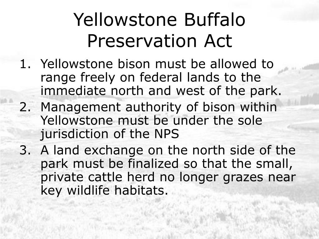 Yellowstone Buffalo Preservation Act