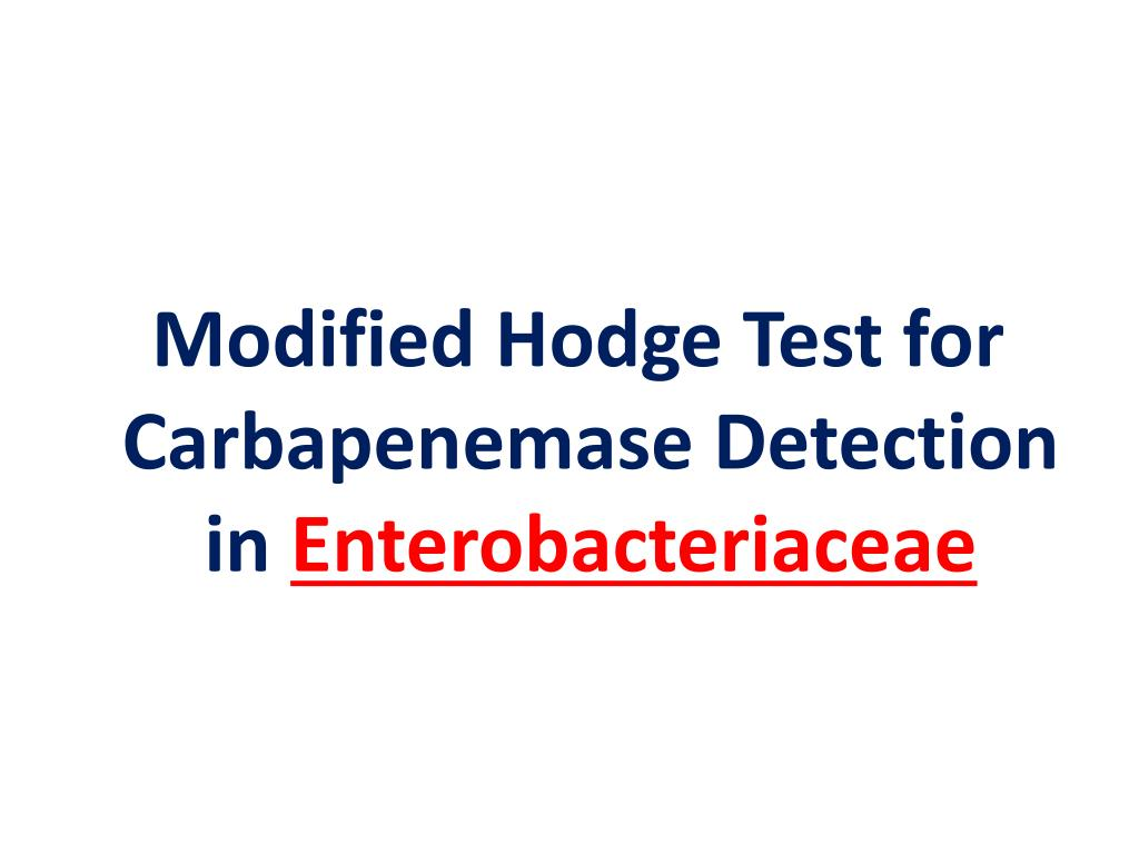 Modified Hodge Test for Carbapenemase Detection in