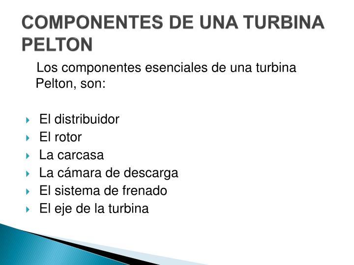COMPONENTES DE UNA TURBINA PELTON