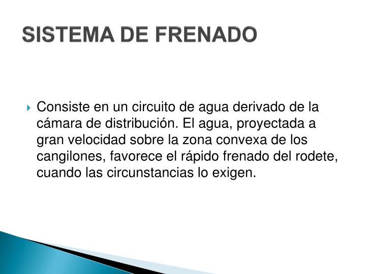 SISTEMA DE FRENADO