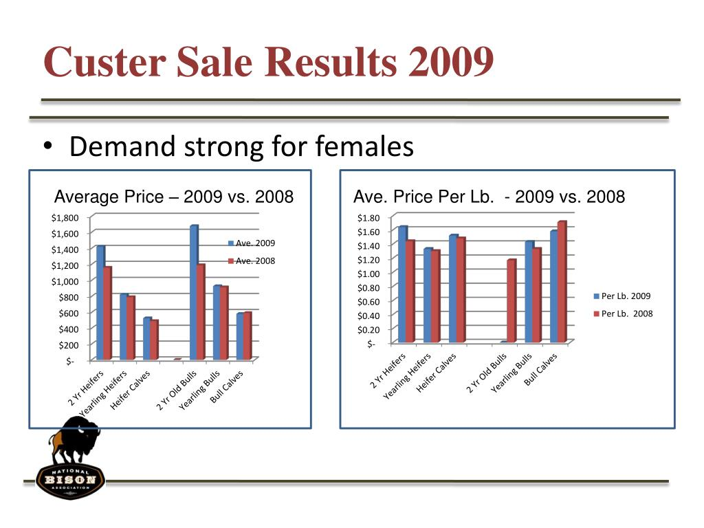 Custer Sale Results 2009