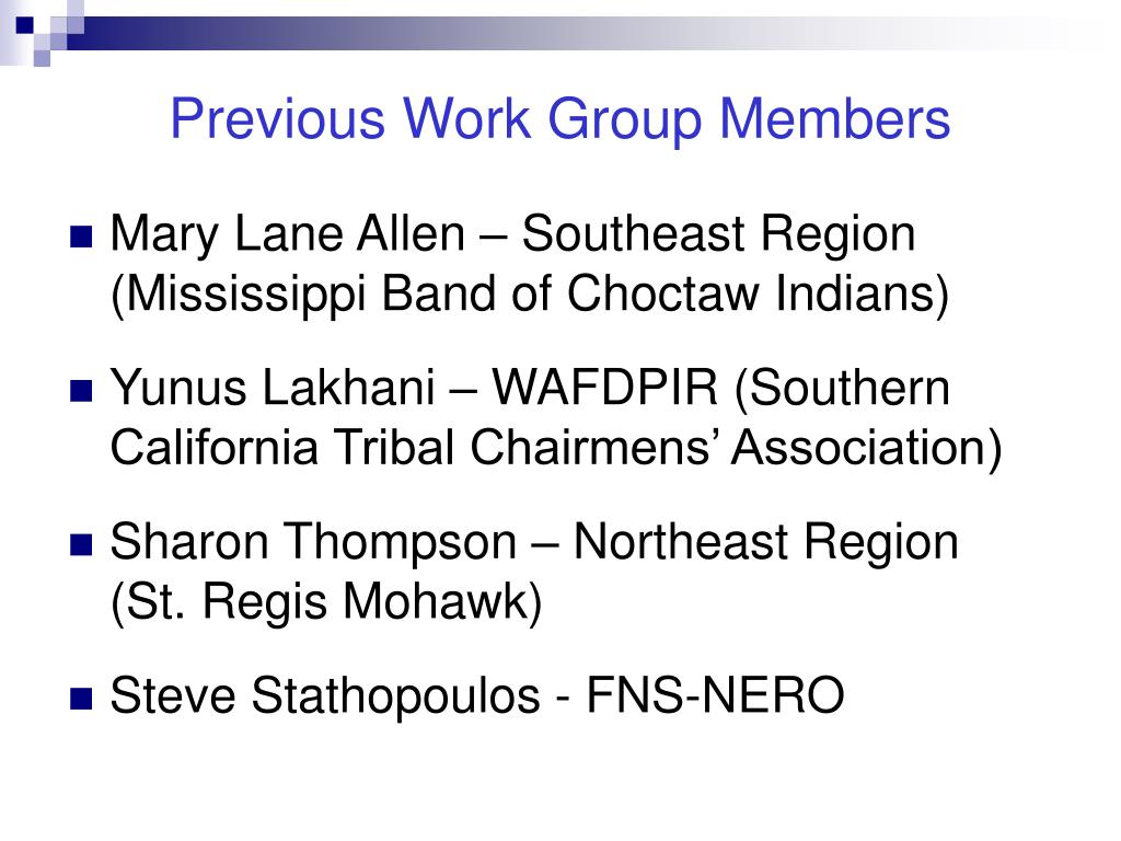 Previous Work Group Members