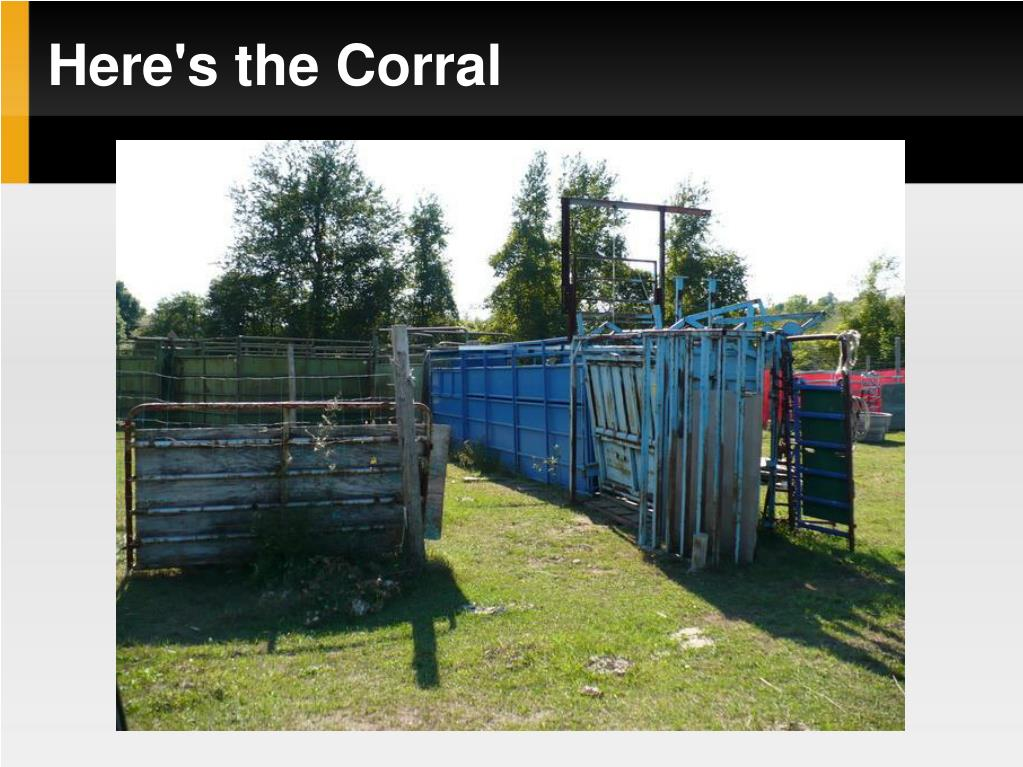 Here's the Corral