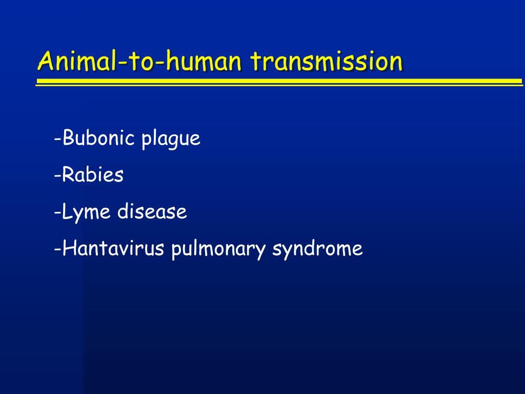 Animal-to-human transmission