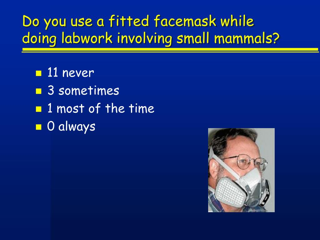 Do you use a fitted facemask while doing labwork involving small mammals?