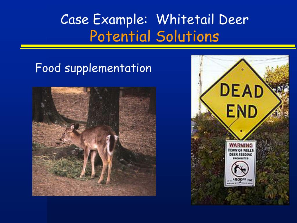 Case Example:  Whitetail Deer