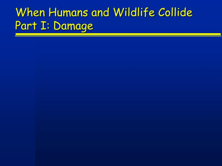 When humans and wildlife collide part i damage