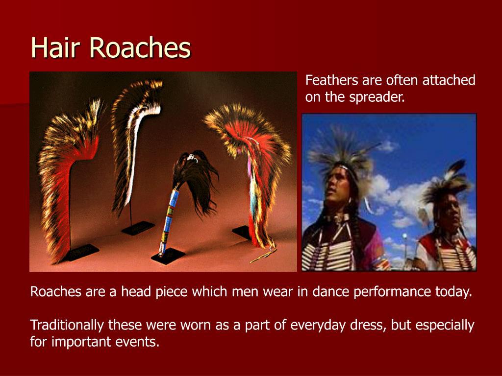 Hair Roaches