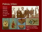 plateau tribes