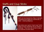 staffs and coup sticks