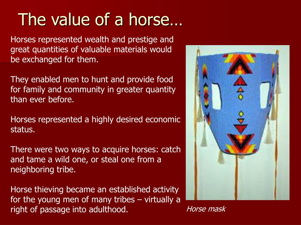 The value of a horse…