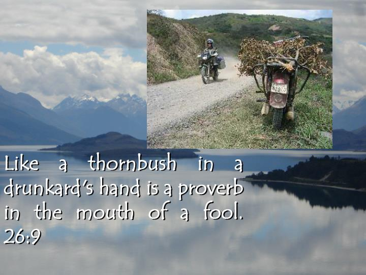 Like a thornbush in a drunkard's hand is a proverb in the mouth of a fool.  26:9