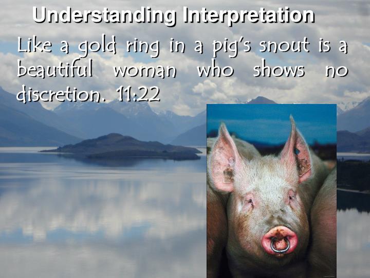 Understanding Interpretation