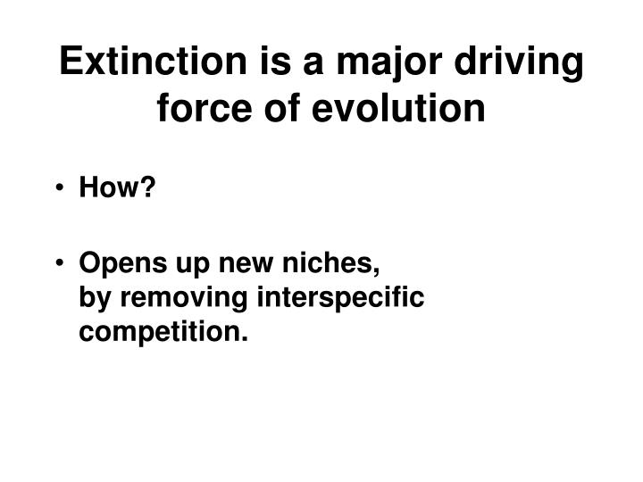 Extinction is a major driving force of evolution