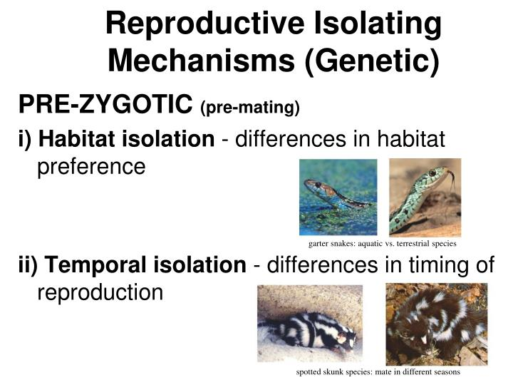 Reproductive Isolating Mechanisms (Genetic)