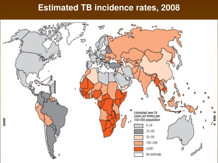 Estimated TB incidence rates, 2008