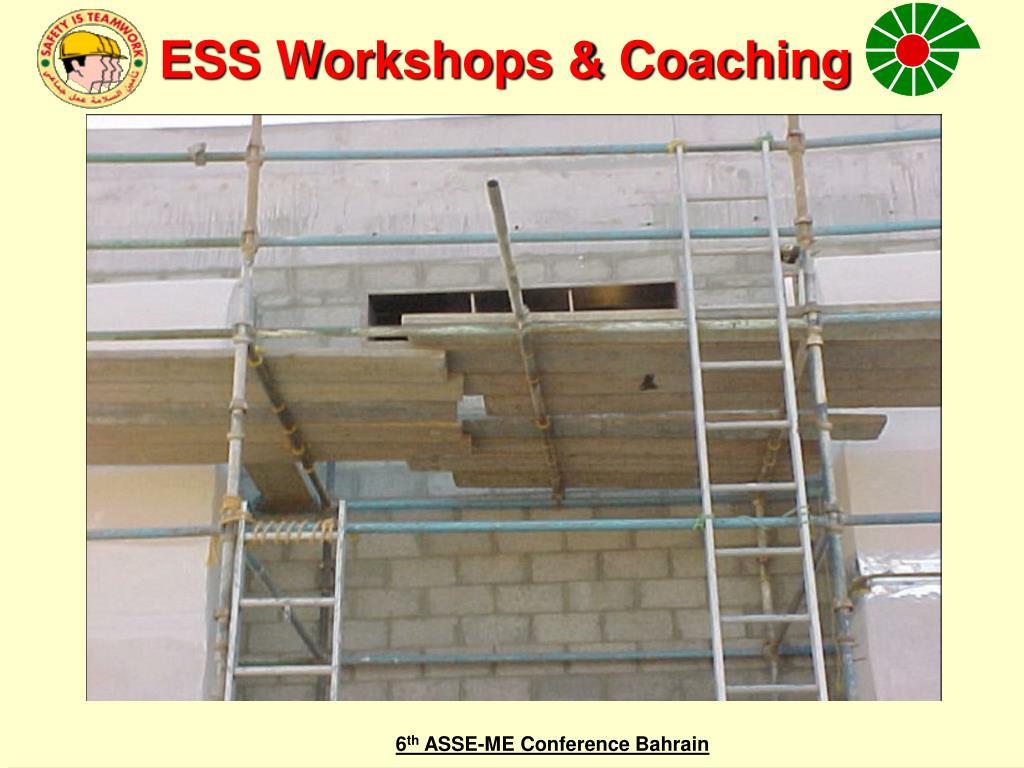 ESS Workshops & Coaching