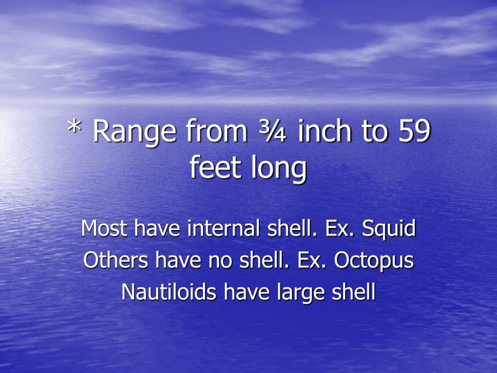 * Range from ¾ inch to 59 feet long