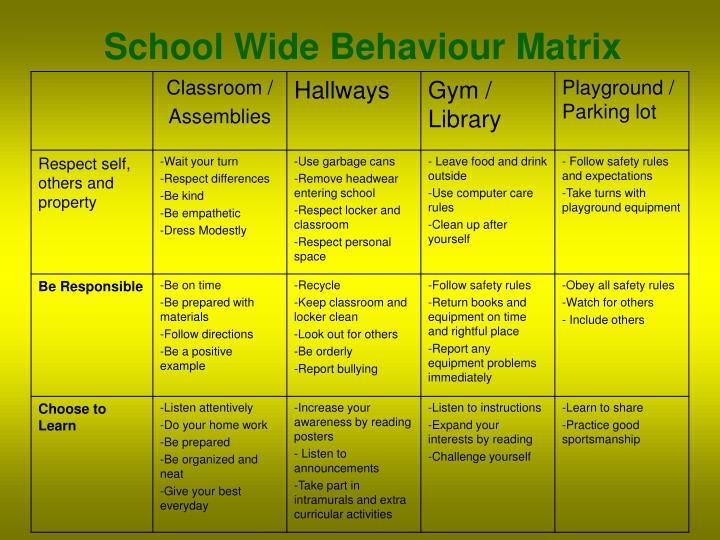 School Wide Behaviour Matrix