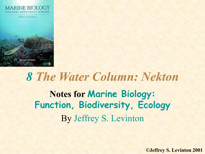 8 the water column nekton