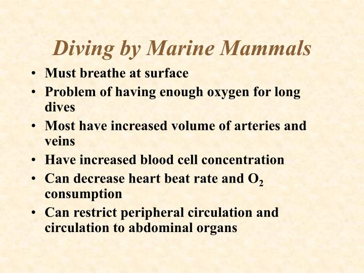 Diving by Marine Mammals