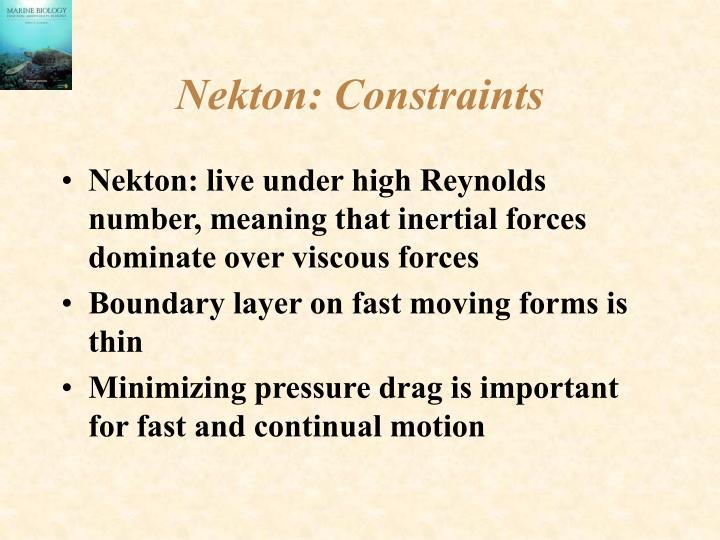 Nekton: Constraints