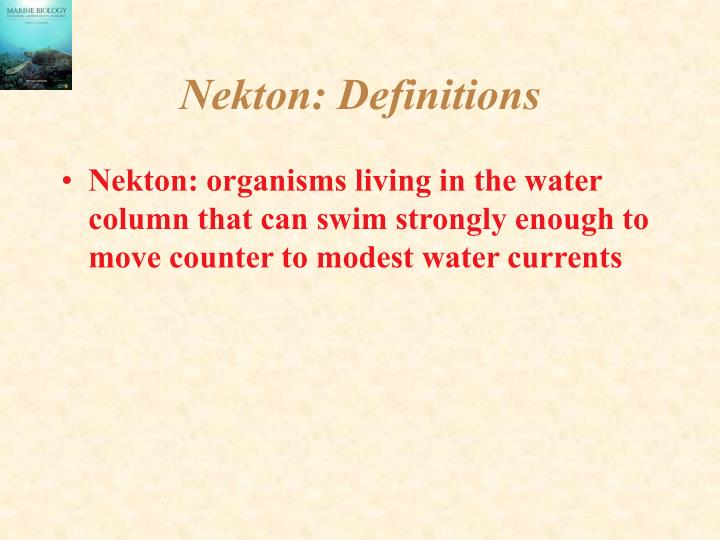 Nekton definitions