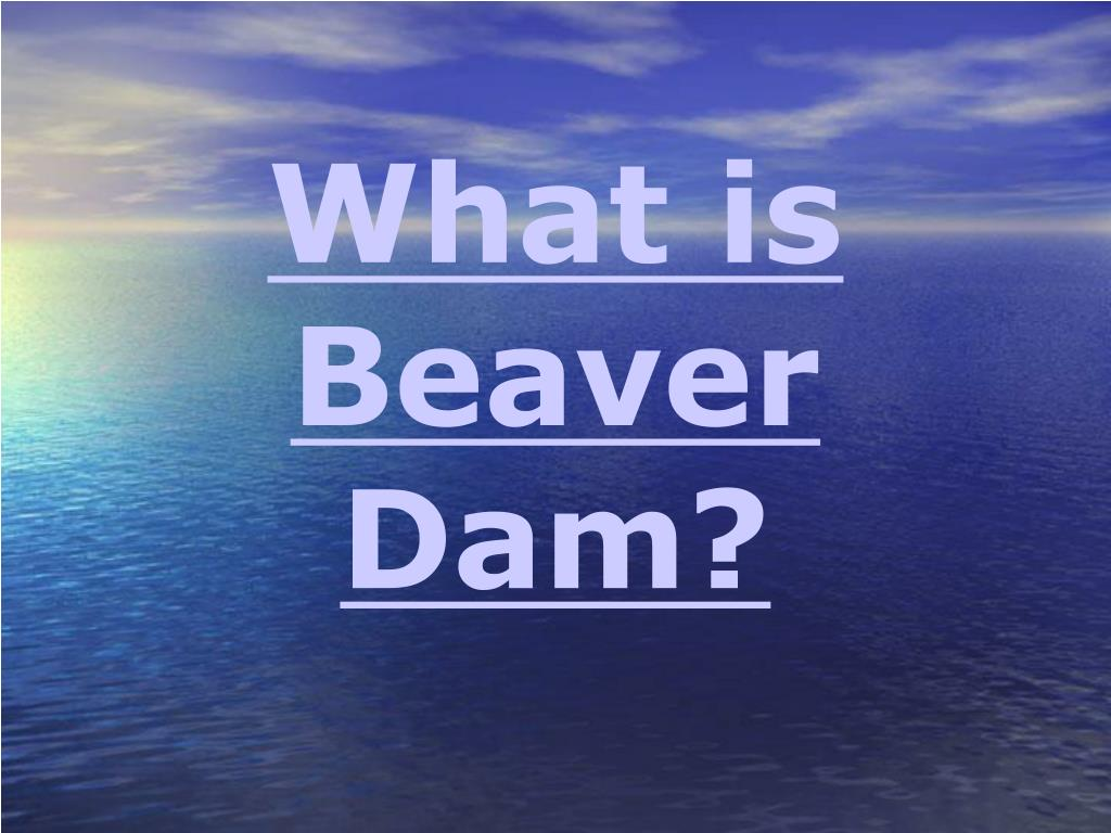 What is Beaver Dam?