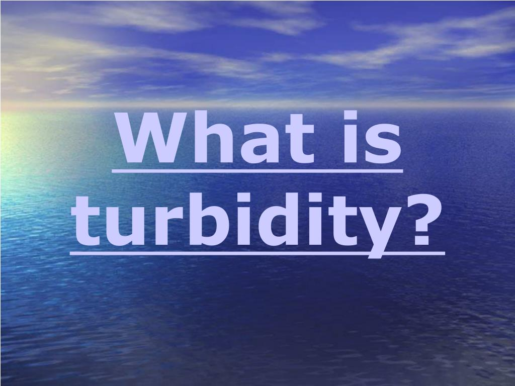 What is turbidity?