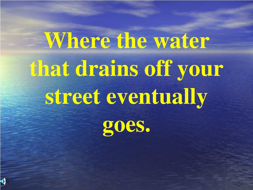 Where the water that drains off your street eventually goes.