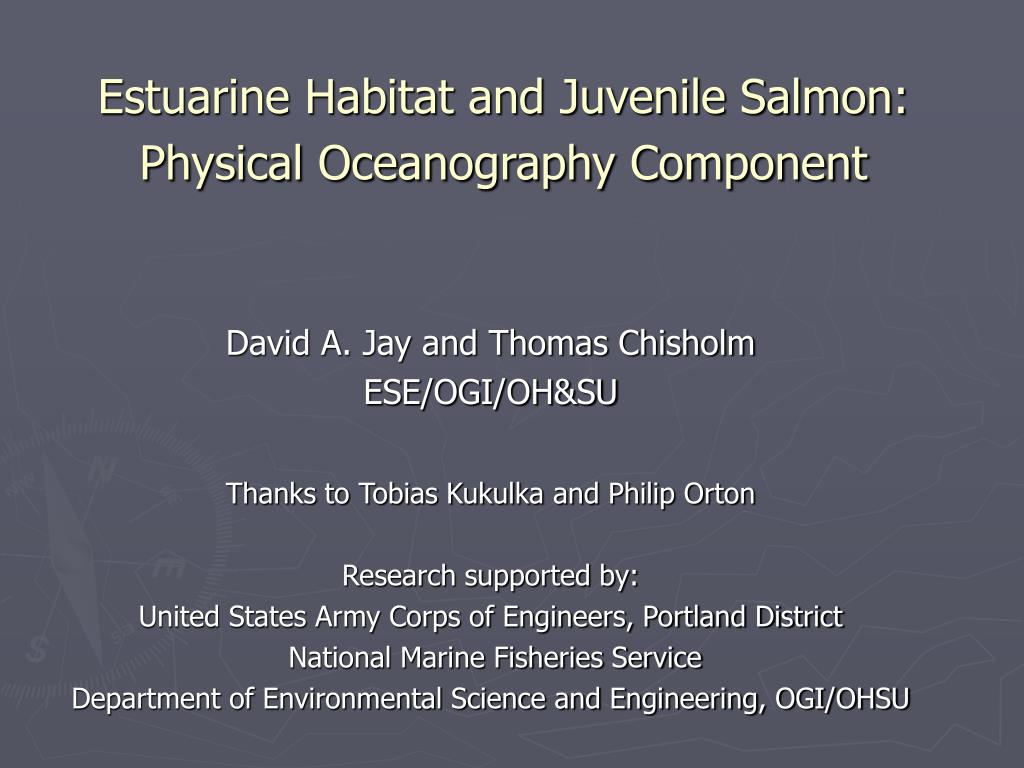 Estuarine Habitat and Juvenile Salmon: Physical Oceanography Component
