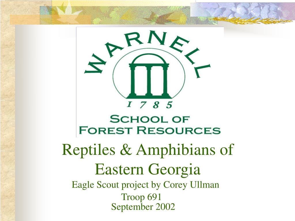 Reptiles & Amphibians of Eastern Georgia