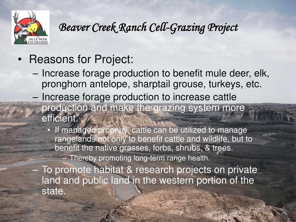 Beaver Creek Ranch Cell-Grazing Project