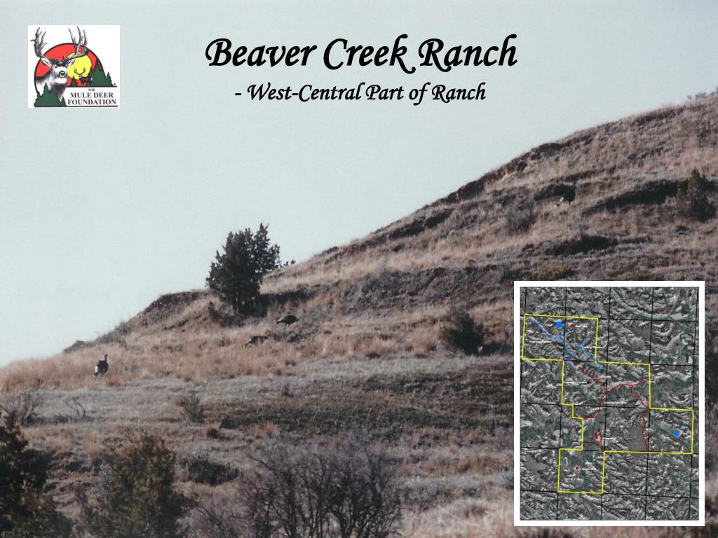 Beaver Creek Ranch