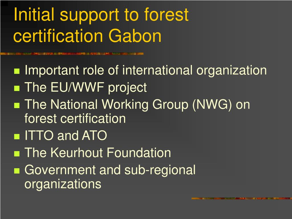 Initial support to forest certification Gabon