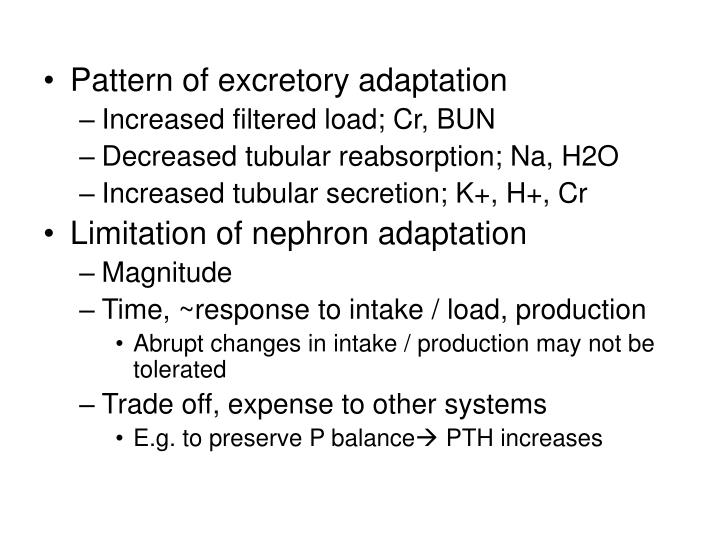 Pattern of excretory adaptation